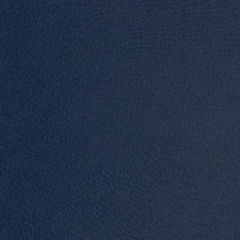 Regimental Blue